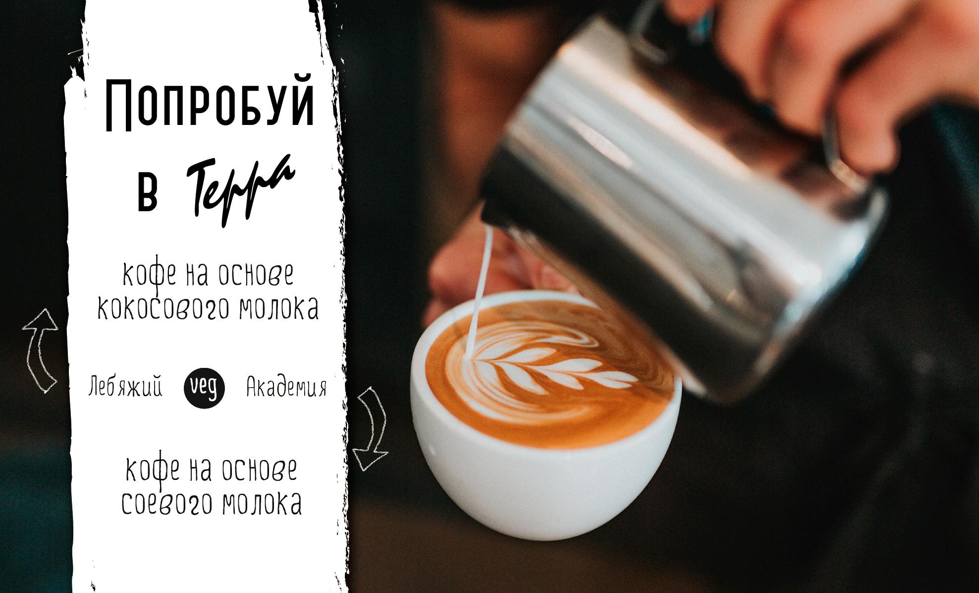 Кофе на основе соевого и  кокосового молока в Terra!